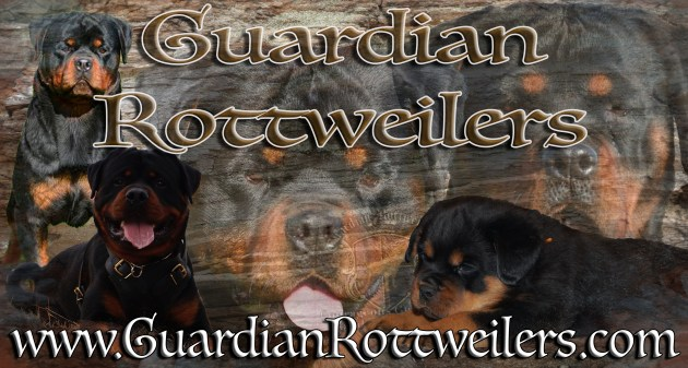 Guardian Rottweilers
