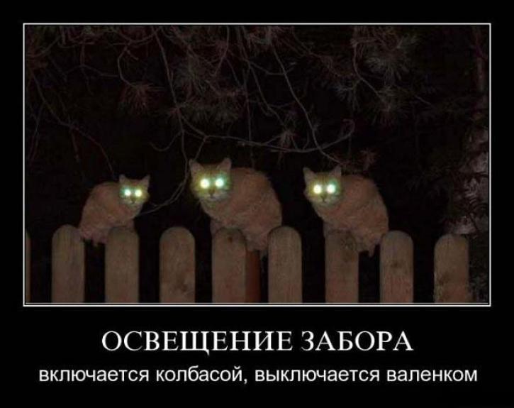 humor_30_06_17_5