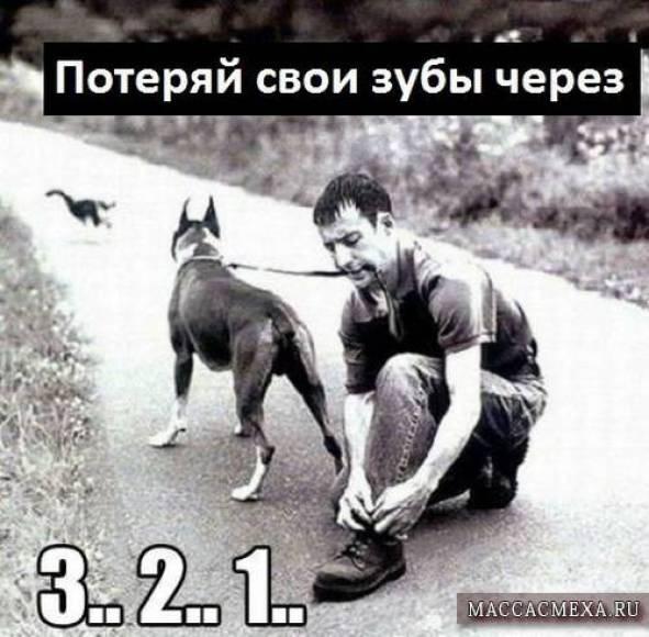 humor_11_08_17_23