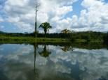 Rio Lampara scene