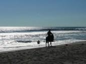 cowboy along the beach