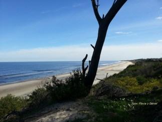 Medanos y Playa (foto enviada por Flavia y Daniel)