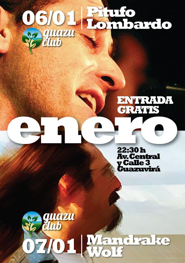 Afiche Enero 2011