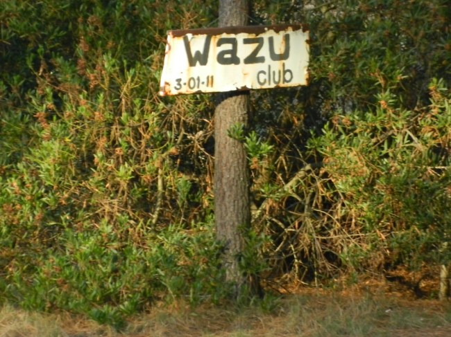 El Wazu (Guazu) - Fotos de Matías