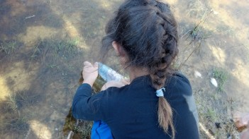 Pescando con trocitos de pan en una botella plástica (cortada arriba)