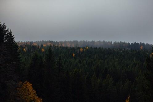 курган, петрозаводск, фото, панорама, карелия