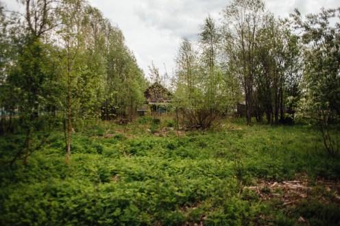 Вместо дома - болото
