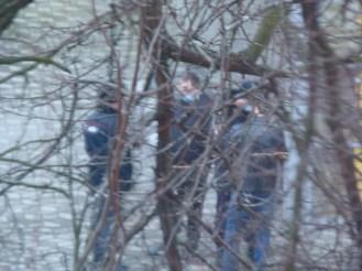 Через ветки деревьев видна толпа подростков, стоящих на улице вместе с полицией