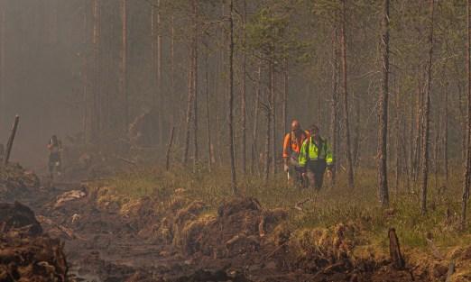 пожары в Карелии 2021 МЧС