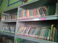 Rak Buku Perpustakaan Nagari Kelurahan Kamopung Jawa, Solok.