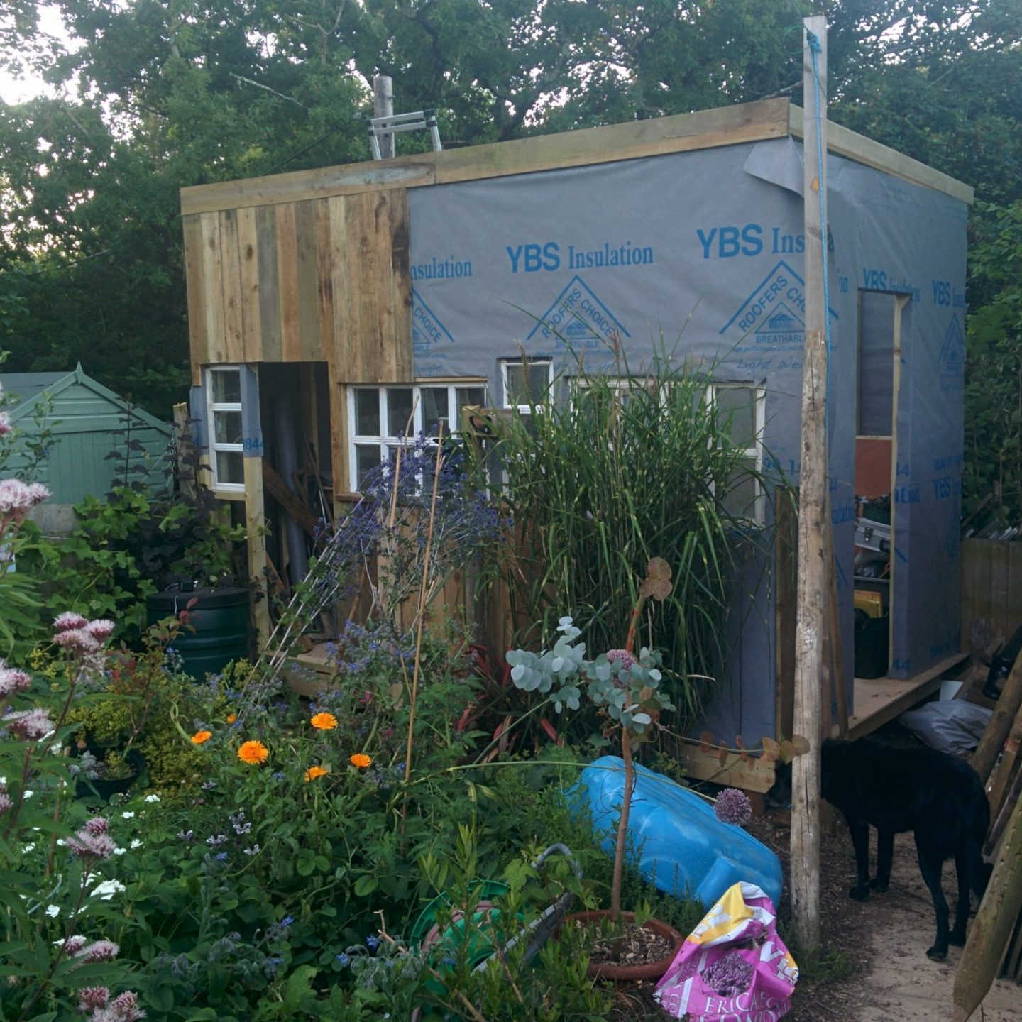 The Shed Build #shed #diy #woodworking