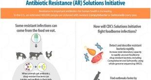 resistensi-antibiotik