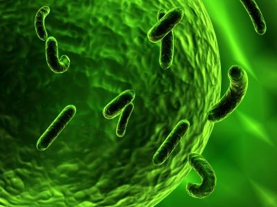 Prinsip Bacterial Endotoxin Test (BET) Untuk Mendeteksi Pirogen dalam Produk Farmasi