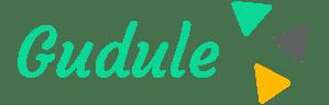 Gudule : réseau de kinésithérapeutes à domicile