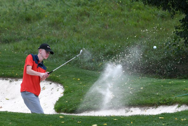 Photos: District 4/10 high school golf championship tournament 2019