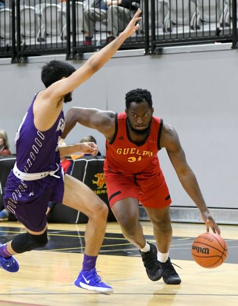 Photos: Guelph Gryphons-Western men's basketball