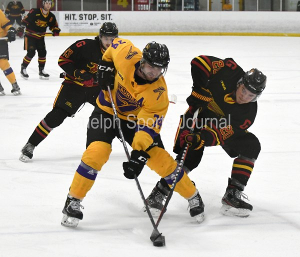 Photos: Guelph Gryphons-Laurier men's hockey