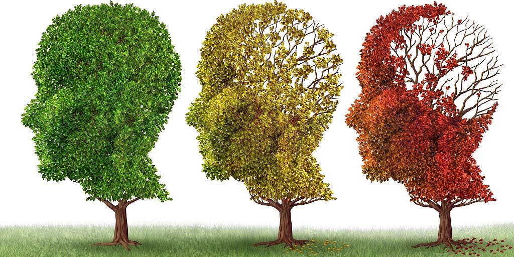 Appel : et si les maladies neurodégénératives et les cancers avaient la même origine ?