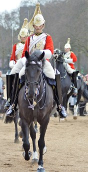 A Trooper of the Life Guards