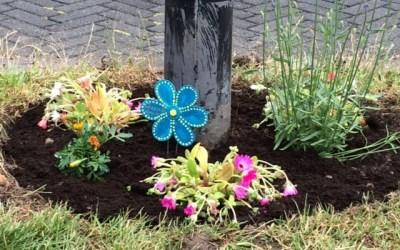 Kleurrijke planten in plaats van hondenpoep in Almere Buiten