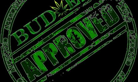 "BUD-EZ ""Industry Takeover"" Official Video!!"