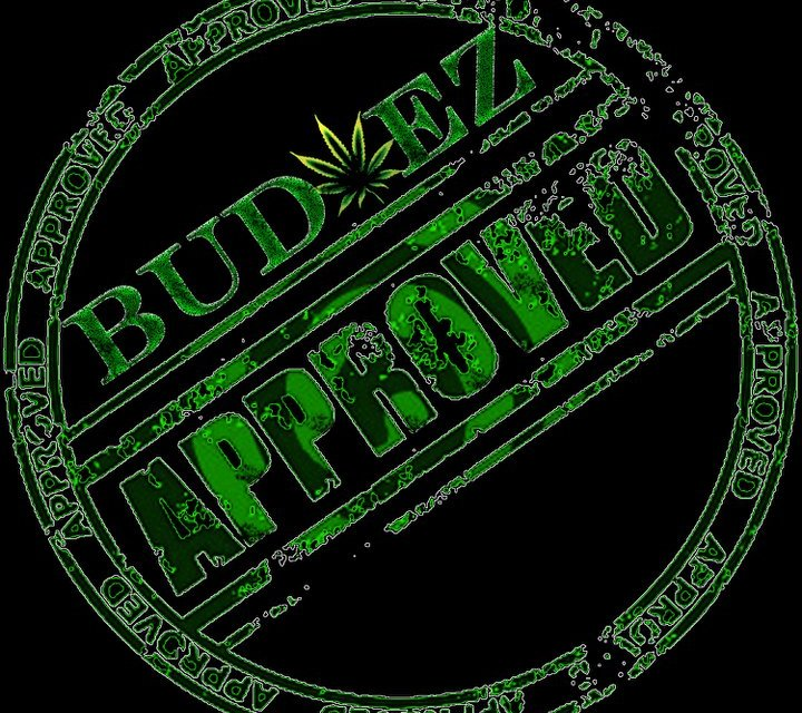 """BUD-EZ """"Industry Takeover"""" Official Video!!"""
