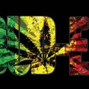 """BUD-EZ 420 EDITION """" ONE OF THOSE SONGS """""""