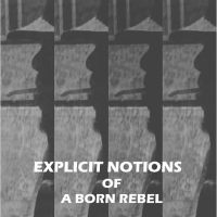 Explicit Notions of A Born Rebel by ~ Patrice F Gibbs
