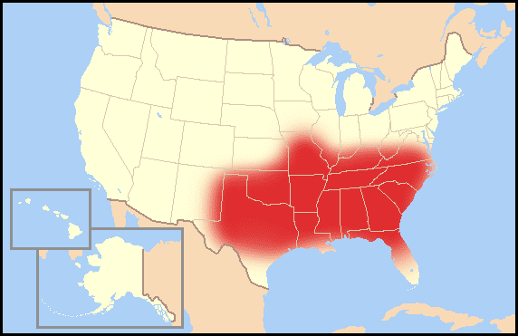 "The Bible Belt is a vernacular region. Everyone may not agree which states are in the area, but most people will know what you are talking about when you say ""Bible Belt."""