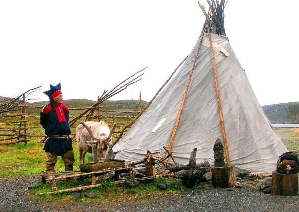 A  Sámi  man and his reindeer