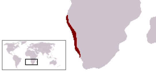 A location map showing the approximate boundaries of the Namib Desert