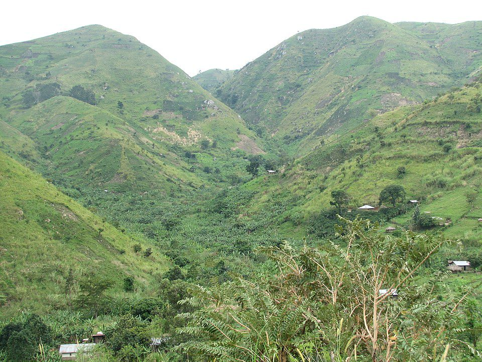 The terraced steep hillsides of the lower slopes of the Rwenzori Mountain range