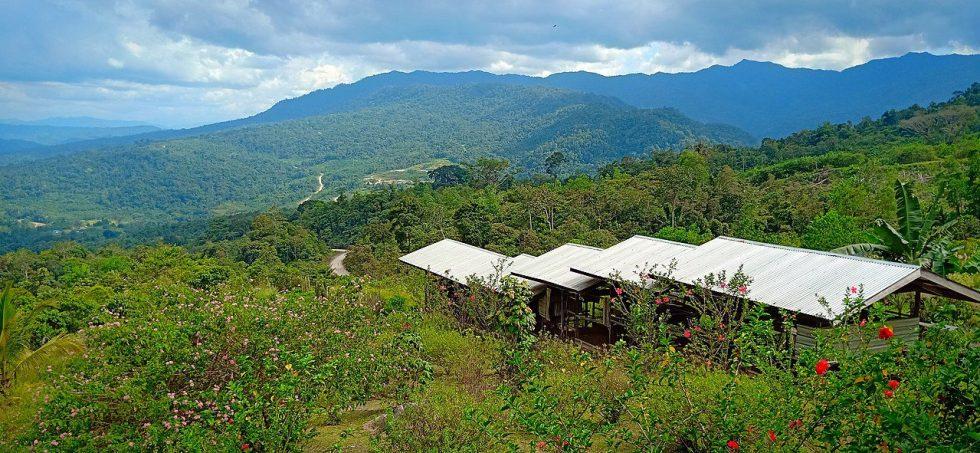 Borneo featuring the Merarap hills