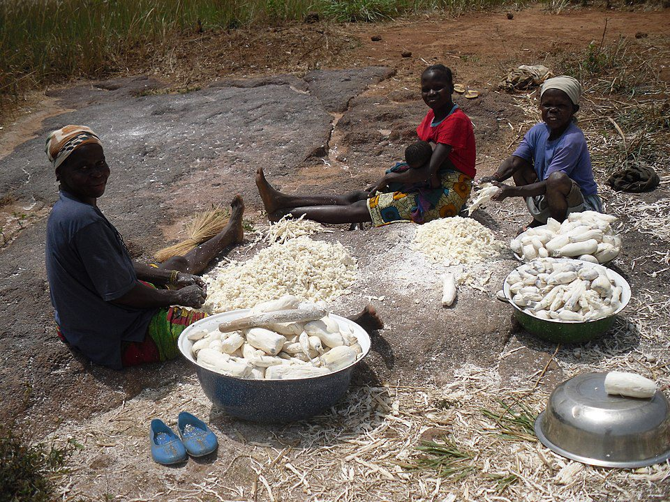 Women preparing cassava