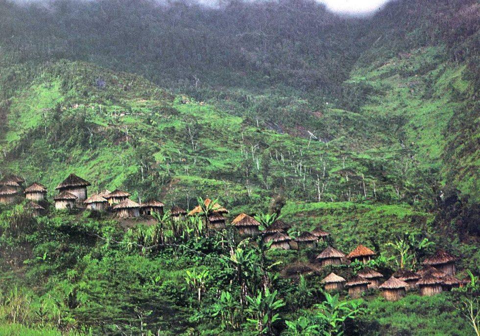 A village in Papua New Guinea