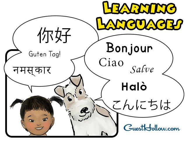 Homeschool Foreign Language Programs