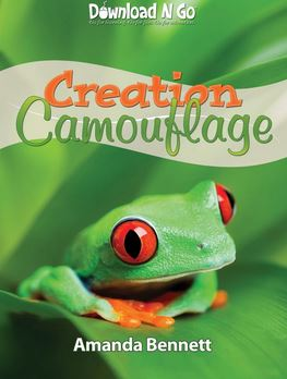 Creation Camouflage