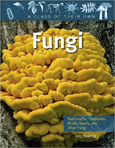 Fungi: Mushrooms, Toadstools, Molds, Yeasts, and Other Fungi