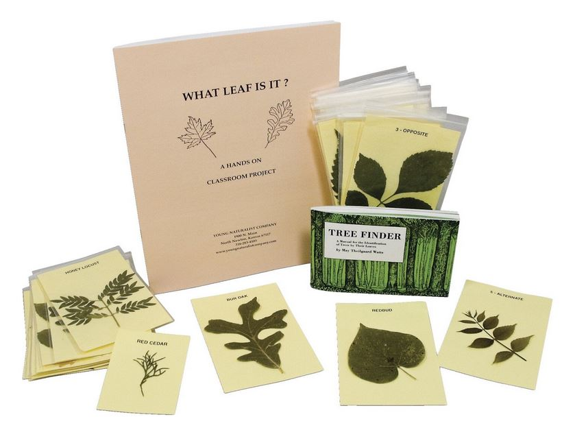 Young Naturalist Leaf Identification Kit