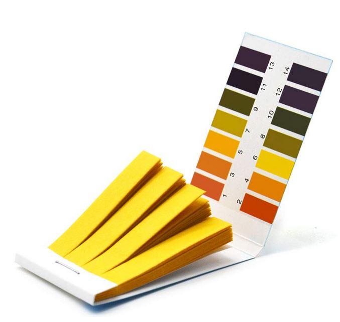 Litmus pH Test Strips