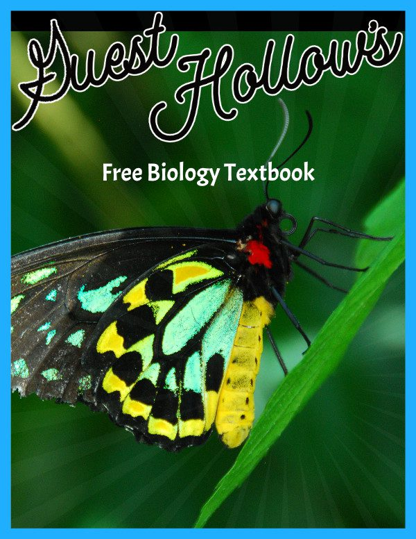 Free biology curriculum textbook