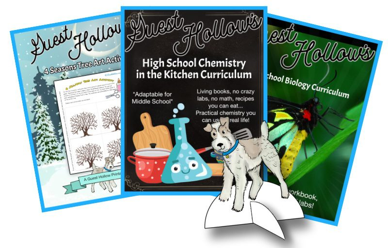 Guest Hollow homeschool curriculum and homeschool printables