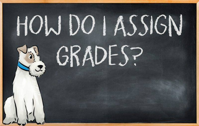 How to assign grades in your homeschool