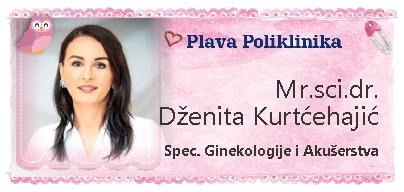 Dženita Kurtčehajić