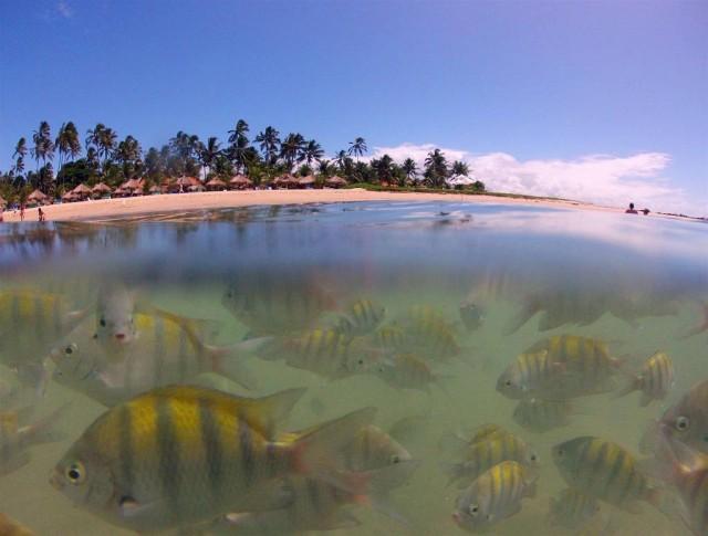 praia-serrambi-resort.JPG.1024x0