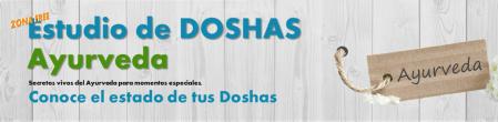 banner_ayurveda_estuio_doshas