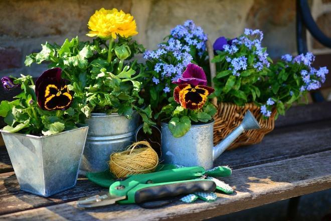 preparacion-jardin
