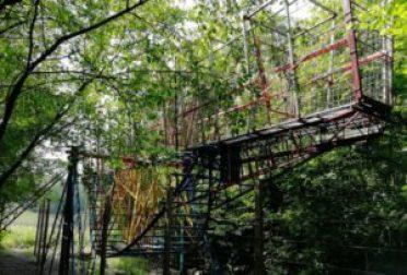 Fotos: www.aipioppi.com
