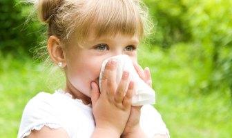 mitos-e-verdades-sobre-alergia-respiratoria-infantil