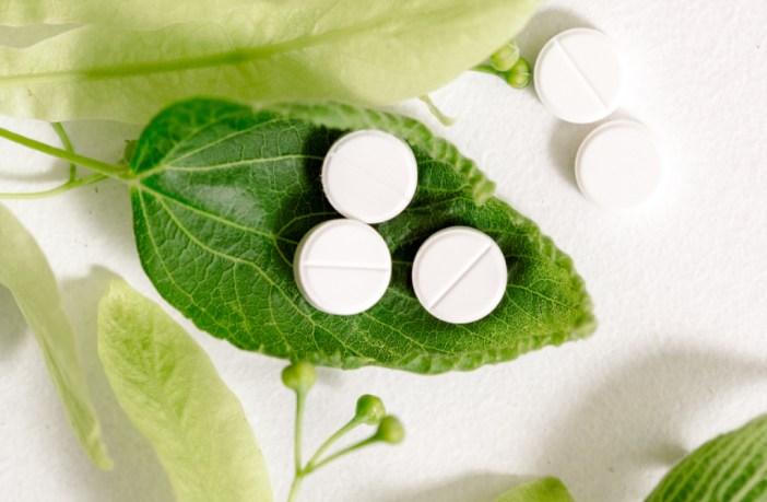 politicas-publicas-apoiam-uso-de-medicamentos-fitoterapicos